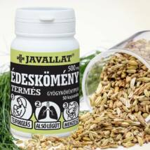 Édeskömény termés: fokozza a tejelválasztást, tisztítja a tüdőt, javítja az emésztést