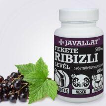 JAVALLAT® Fekete ribizli levél kapszula - SonicFine® gyógynövényporból
