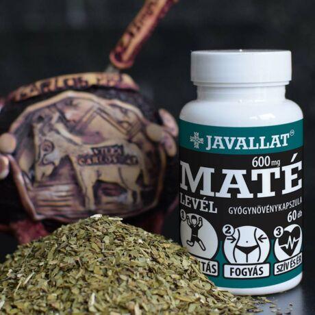 JAVALLAT® Maté levél kapszula - SonicFine® gyógynövényporból