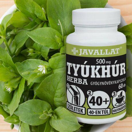 JAVALLAT® Tyúkhúr herba kapszula - SonicFine® gyógynövényporból